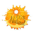 logo natural orange with shadow on a white vector image vector image