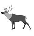 reindeer image isolated on white background vector image