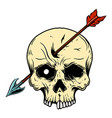skull with arrow in head design element for logo vector image vector image