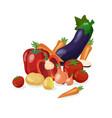 fresh vegetables background vector image