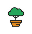 bonsai tree icon on white background vector image