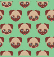 cute pug faces vector image