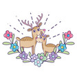deer couple with flowers and leaves to valentine vector image vector image
