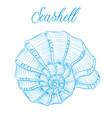 nautilus sea shell hand drawn blue linear vector image vector image
