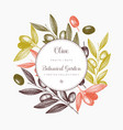 olive branch wreath vector image vector image