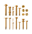 set of fasteners golden color vector image