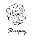 Sharpay vector image vector image