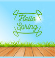 spring hello colorful background stylish vector image vector image