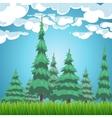 Spruce forest nature landscape vector image