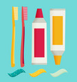 Toothbrush and toothpaste isolated on a flat vector image