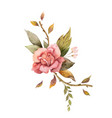 watercolor autumn arrangement with rose and vector image vector image