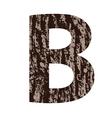 wooden letter B made from oak bark vector image vector image
