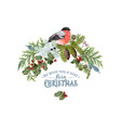 bullfinch christmas composition vector image vector image