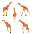 Colored of a giraffe vector image