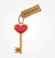 gold key with tag vector image vector image