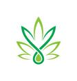 leaf eco sign logo vector image vector image