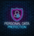 personal data protection glowing neon sign vector image