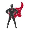 Superhero standing in defensive stance vector image vector image