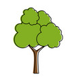 tree plant isolated icon vector image vector image