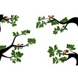 Branches with cute squirrel vector image
