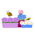 blossom flowers in pots and cute cartoon insects vector image
