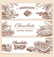 cocoa beans chocolate product horizontal vector image