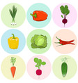 colored icons vegetables vector image vector image