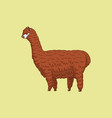 cute alpaca llamas or wild guanaco on the vector image vector image