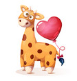 cute funny teddy giraffe with heart balloon vector image