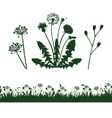 dandelion and grass vector image vector image