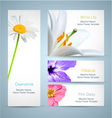 Flower blossom templates design vector image vector image