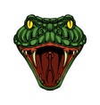 head snake design element for logo label sign vector image vector image