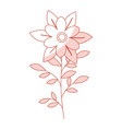 naturals flowers tattoos vector image vector image