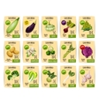 Organic vegetable price tag or label set design vector image vector image