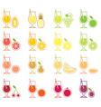 Fruit Juice Icon Set vector image