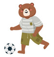 cartoon bear with athletic suit kicking playing vector image vector image