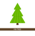 fir tree icon vector image