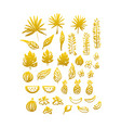 gold hand drawn plants vector image vector image