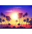 ocean sunset sky with dark palm silhouettes vector image vector image