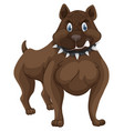 pitbull with angry face vector image