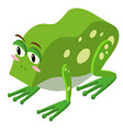 3d design for green frog vector image vector image