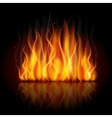 burning flame background vector image vector image