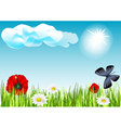 field with butterflies and flowers vector image vector image