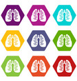 lungs icon set color hexahedron vector image