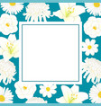 white chrysanthemum aster camellia cosmos and vector image vector image