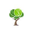 abstract tree logo icon concept vector image vector image