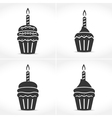 Birthday Cupcakes with Candles vector image