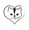 cat feline curious small love sketch vector image vector image