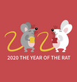 cute couple rat vector image