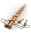Ethnic bamboo flute vector image vector image